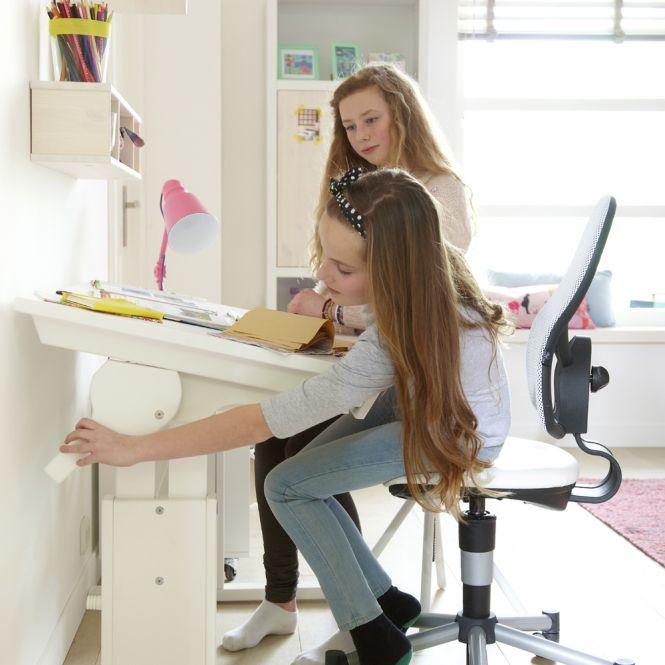 LIFETIME Höhenverstellbarer Schreibtisch TOLA, neigbarer Tischplatte, Holz